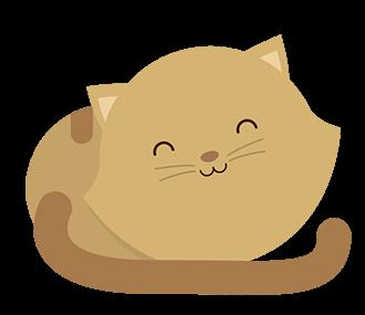 Un bel gattino